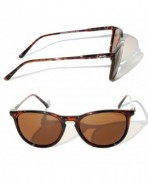 Tortoise Polarized Sunglasses DANG Shades
