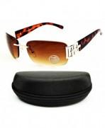 Style Vault Sunglasses Tortoise Brown Brown